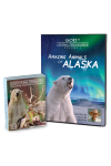 Amazing Animals of Alaska Vol 1 DVD and Creation Cards Combo