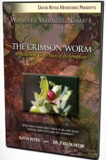 THE CRIMSON WORM: A Pattern of God's Plan of Redemption