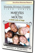 Marvels of the Mouth: A Dentist Looks at Design