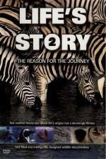 Life's Story 2 DVD